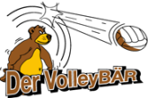 logo volleybaer 1